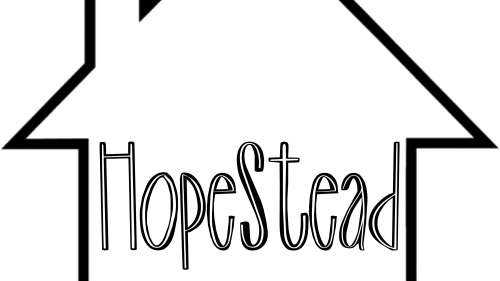 HopeStead Transformation & Possibility for the Homeless
